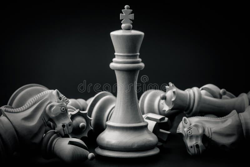 Le roi et le chevalier noirs et blancs des échecs ont installé sur le backgroun foncé image stock