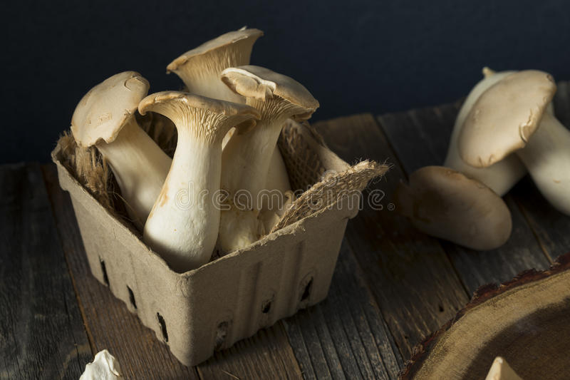 Le Roi organique cru Oyster Mushrooms photo stock