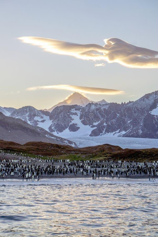 Le Roi Penguins et un nuage lenticulaire chez la Géorgie du sud photographie stock
