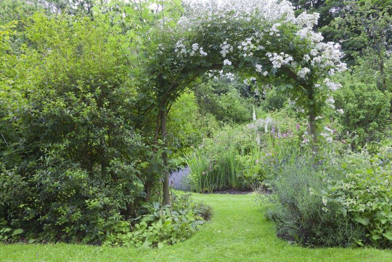 Le rose bianche incurvano in un giardino di fioritura colourful fotografia stock libera da diritti