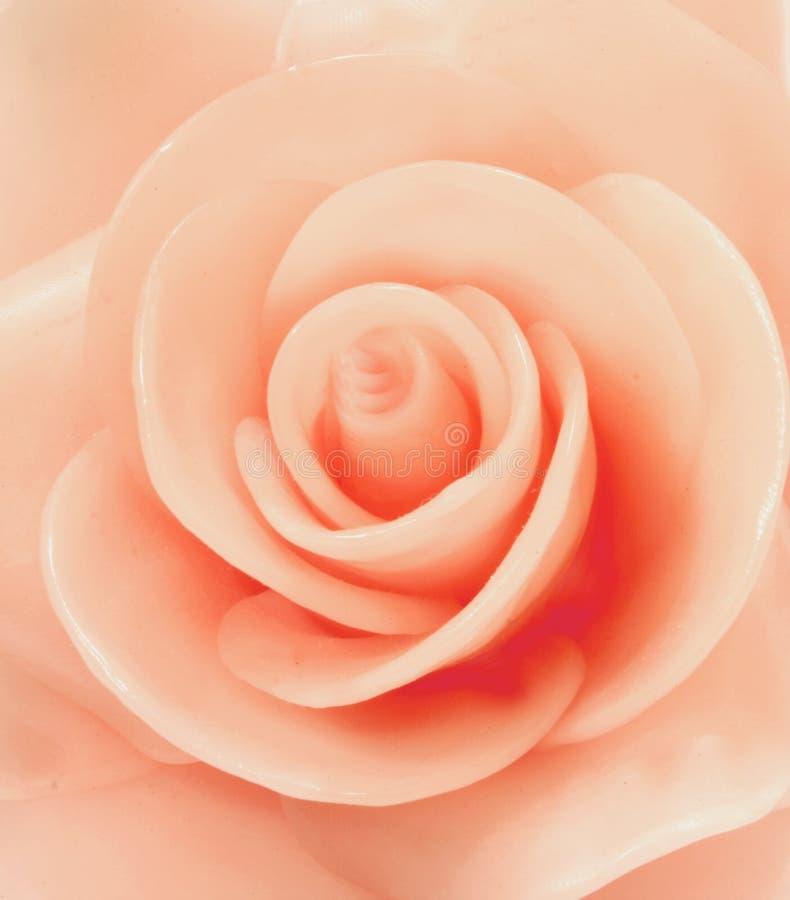 Le rose de cire a monté photo libre de droits