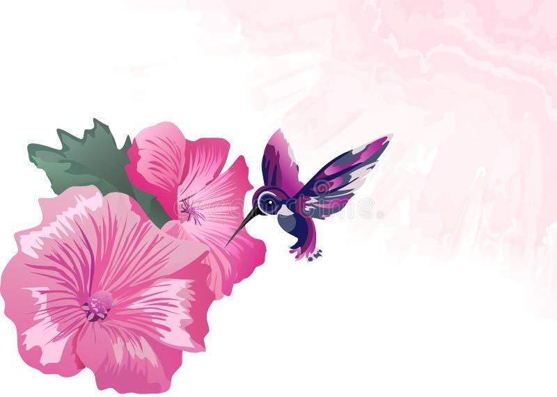 Le rose fleurit des colibris illustration de vecteur