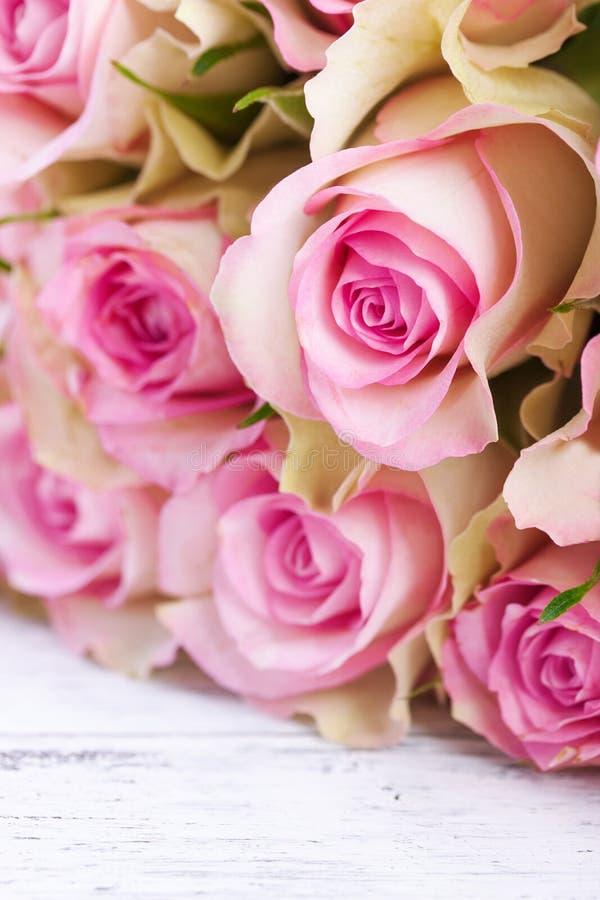Le rose a monté photo stock