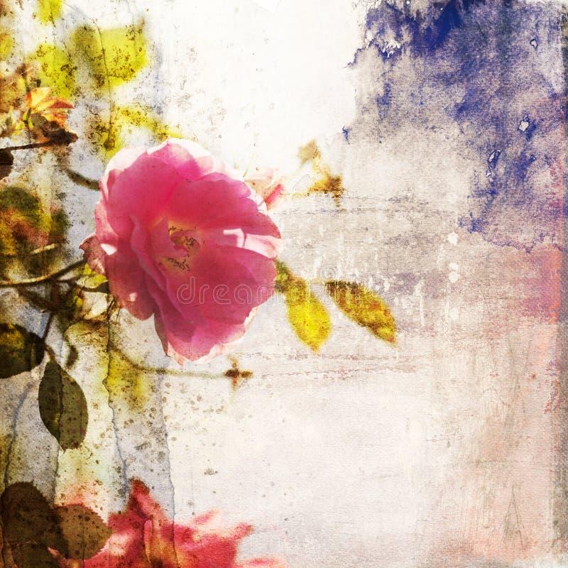 Le rose a monté sur une texture attrayante d'aquarelle images libres de droits