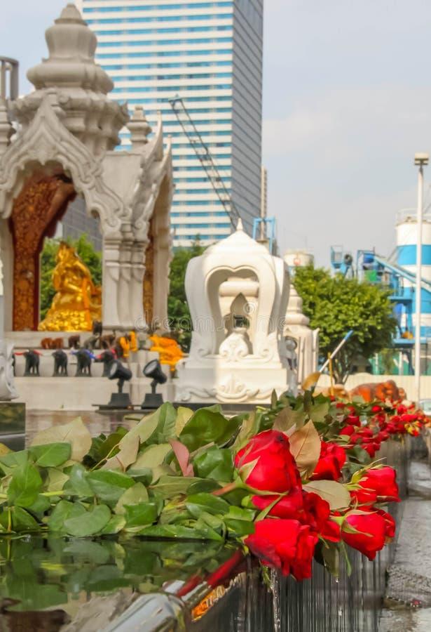 Le rose risiedono in una fontana ad un santuario buddista a Bangkok fotografia stock libera da diritti
