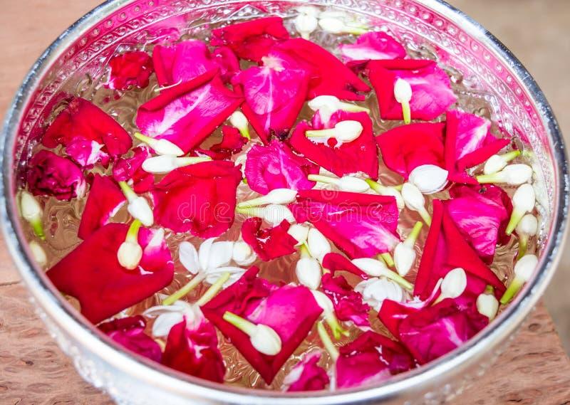 Le rose rosa ed il gelsomino bianco nell'acqua lanciano per i genitori ed i nonni di rispetto sul festival di Songkran aprile immagine stock