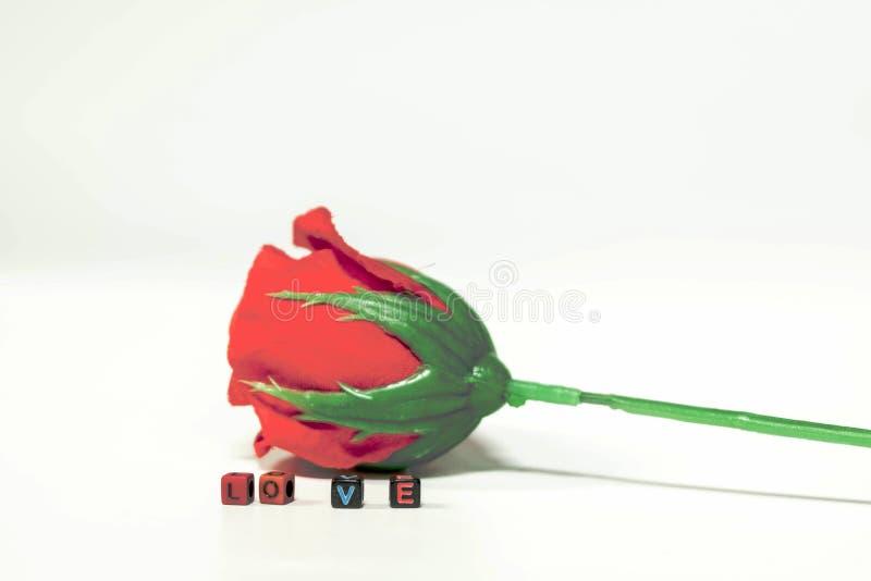 Le rose rosse e le parole di amore sono disposte su un piano d'appoggio bianco immagini stock libere da diritti