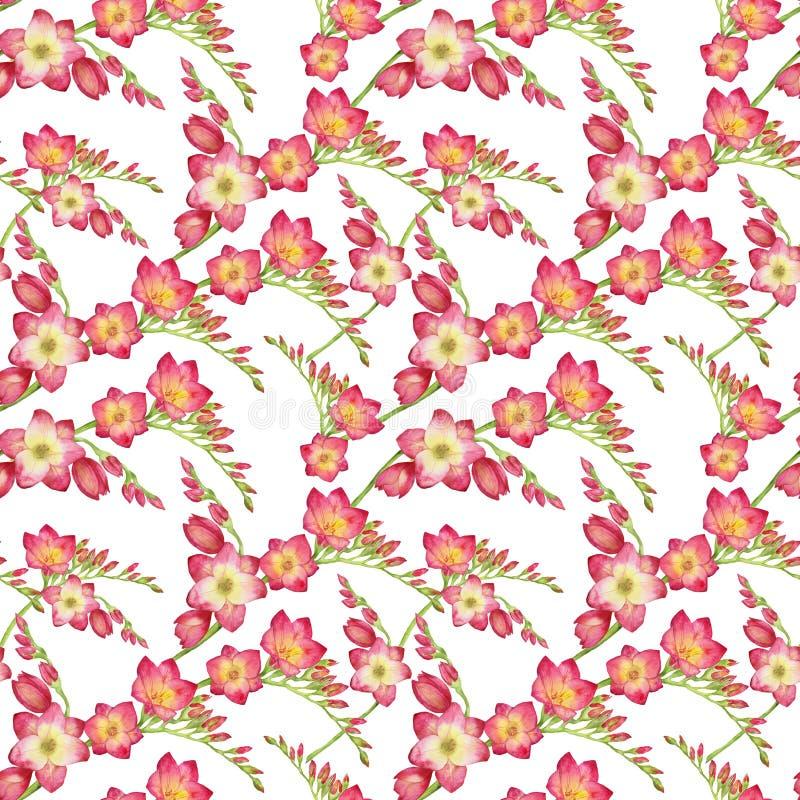 Le rouge fleurit le freesia, illustration tropicale sans couture d'aquarelle de modèle de belle branche de bouquet illustration libre de droits