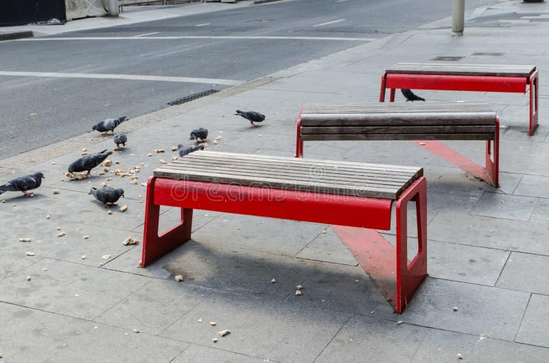 Le rouge met extérieur hors jeu dans le secteur public avec beaucoup de pigeons mangeant un morceau de pain au sol images stock