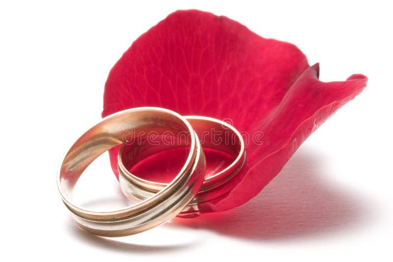 Le rouge a monté - concept de mariage photographie stock