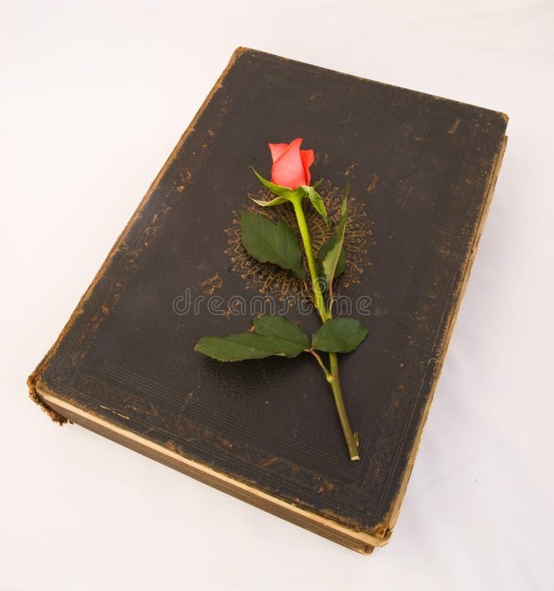 Le rouge a monté pour Pâques sur une bible de famille antique. photos libres de droits