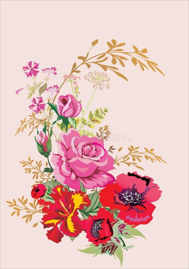 le rouge rose de pavot de bouquet a monté illustration stock