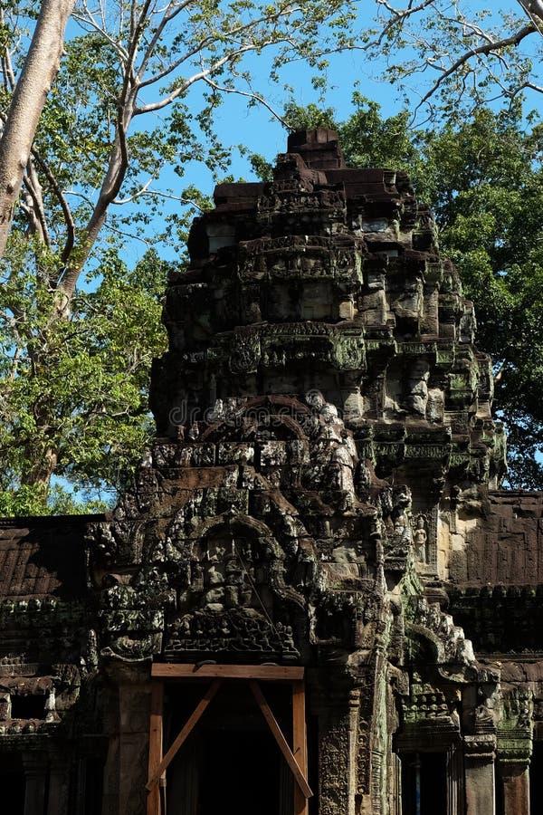 Le rovine del complesso del tempio dei tum Prohm in Cambogia Patrimonio architettonico dell'impero khmer Un capolavoro del mondo fotografia stock libera da diritti