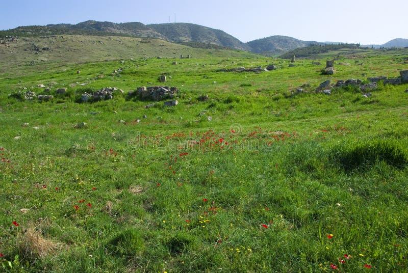 Download Le Rovine Di Laodicea Una Città Di Roman Empire In Attuale, Turchia, Pamukkale Fotografia Stock - Immagine di vecchio, romano: 56881610