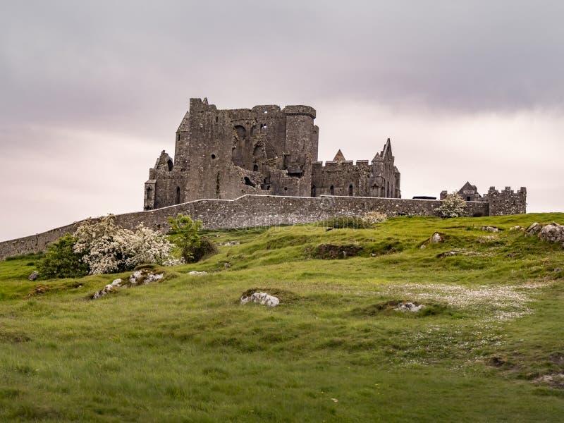 Le rovine iconiche di roccia di Cashel in Irlanda fotografie stock libere da diritti