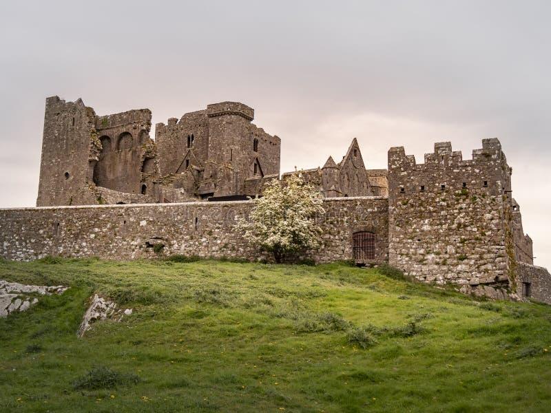 Le rovine iconiche di roccia di Cashel in Irlanda fotografie stock
