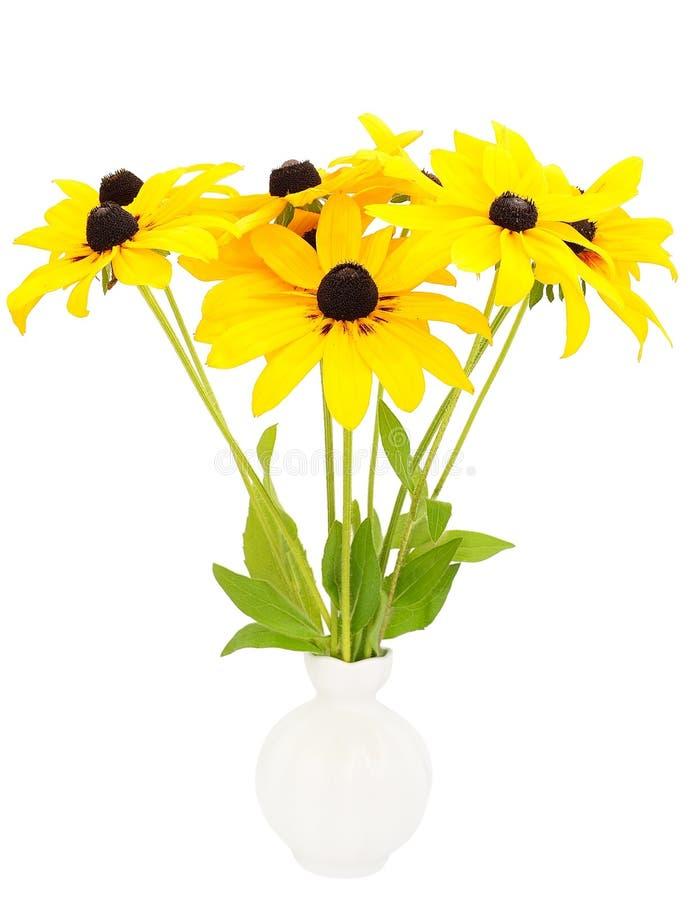 Fleurs jaunes de rudbeckia dans le vase en céramique photos stock