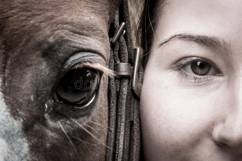 Le ` s de fille et le ` s de cheval observe images stock