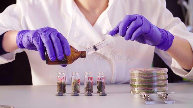 Le ` s de scientifique remet le dissolvant de versement dans les bouteilles photos stock