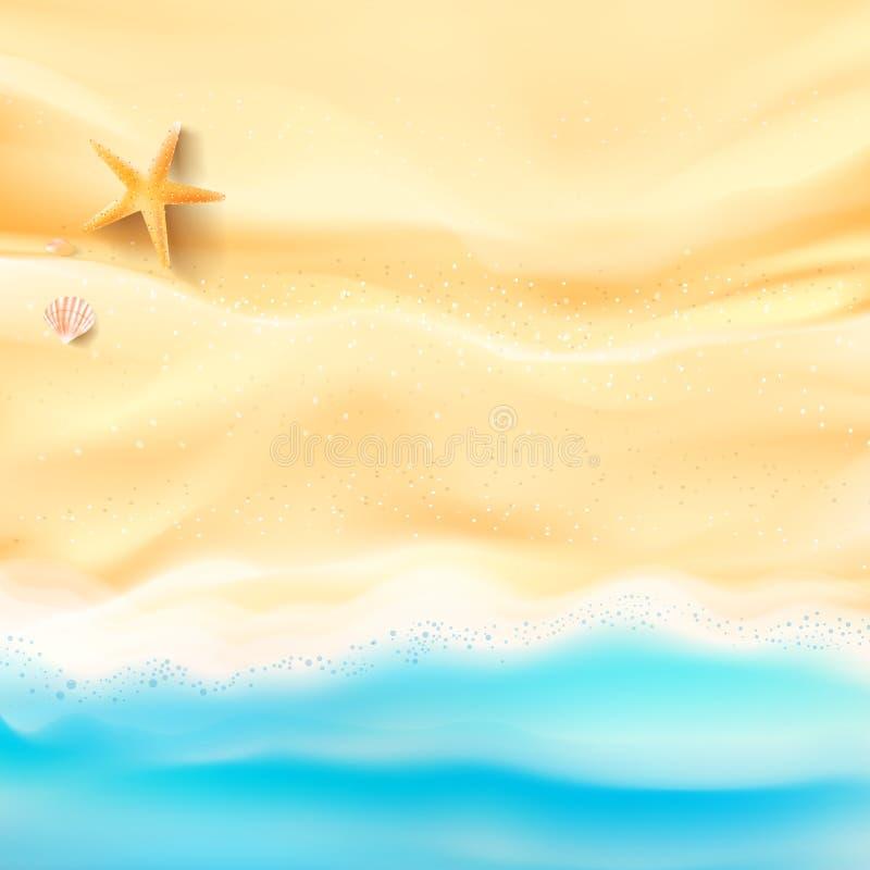 Le sable et la mer abstraits de fond échouent la coquille et la roche d'étoiles de mer illustration libre de droits