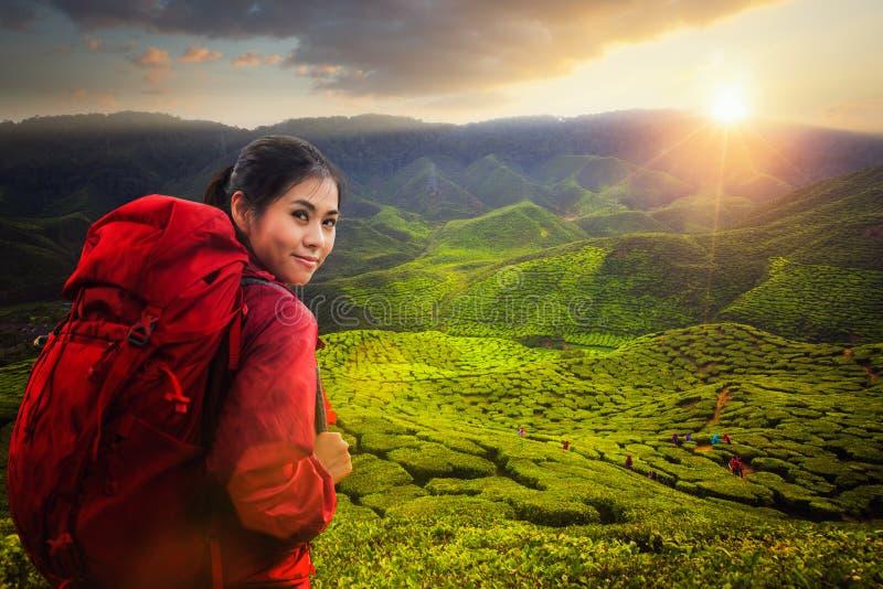 Le sac à dos asiatique de dame et voyagent l'usine de thé vert en Cameron salut photos stock