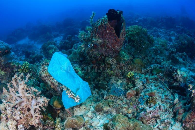 Le sachet en plastique pollue un récif coralien photo libre de droits