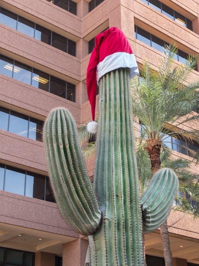 Le Saguaro Cactus porte un chapeau de Père Noël photo libre de droits