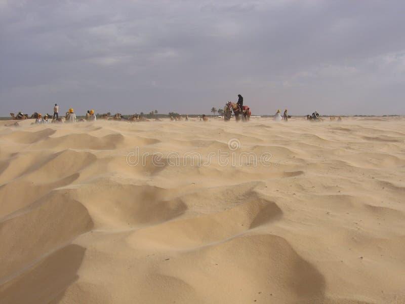 Le Sahara - la Tunisie image libre de droits