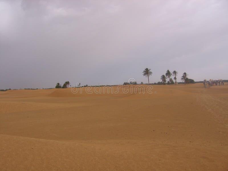 Le Sahara - la Tunisie photos stock