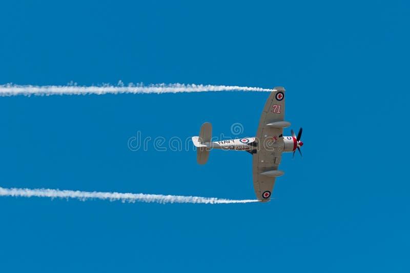 Le Sawbones vole au-dessus photo libre de droits