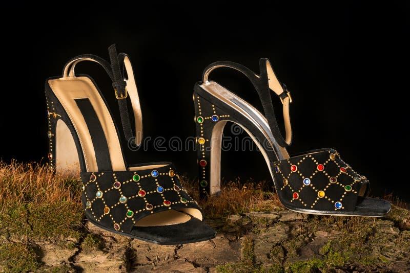 Le scarpe classiche eleganti dell'estate con le pietre variopinte stanno su un vecchio albero invaso con muschio Priorit? bassa n immagine stock