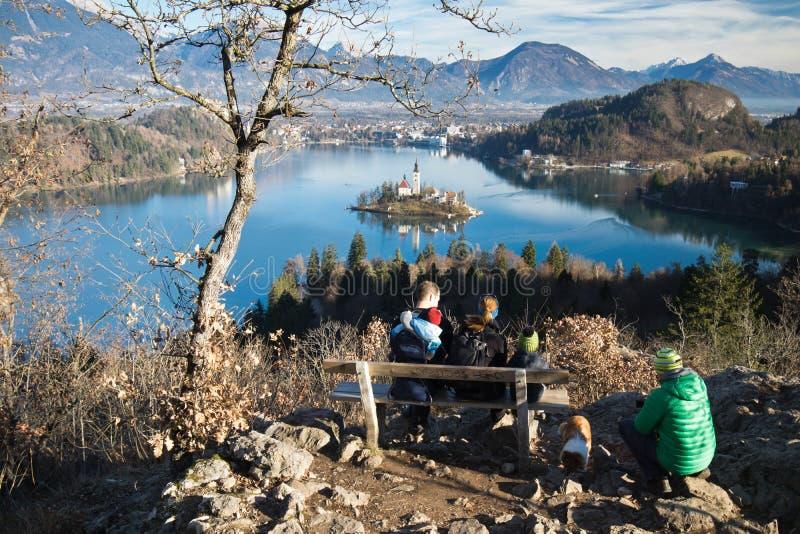 Le scenics populaire admiratif de destination de personnes en Slovénie sur le lac a saigné photo libre de droits