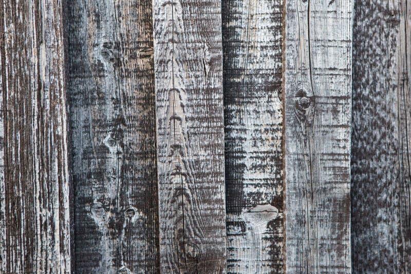 Le schede in legno possono essere utilizzate come trama di fondo fotografie stock