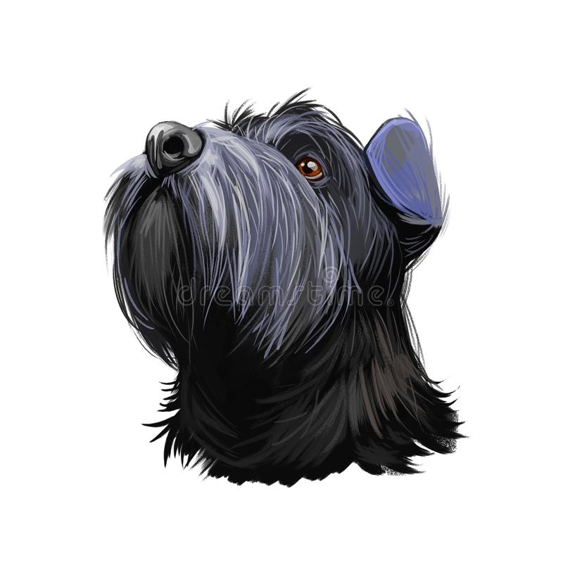 Le Schnauzer Mittelschnauzer a acheté un animal domestique allemand de l'art numérique Doggy allemande au manteau aux cheveux lon illustration stock