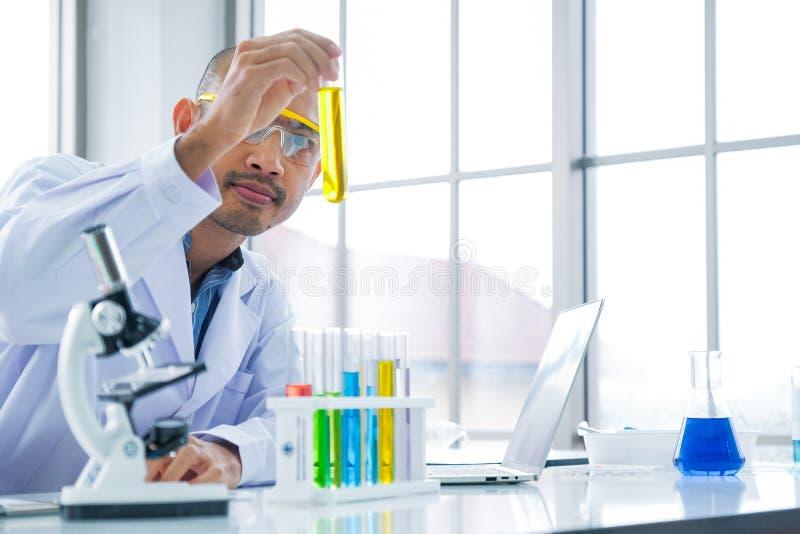 Le scientifique regarde à l'extraction de l'huile jaune dans le tube à essai images libres de droits