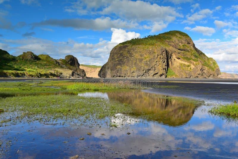 Le scogliere e le formazioni rocciose lungo la sabbia nera Whatipu tirano in Huia fotografia stock libera da diritti