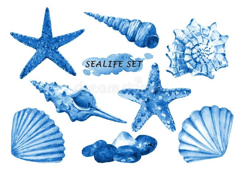Le sealife d'aquarelle a placé avec des coquillages, des étoiles de mer et des pierres illustration stock