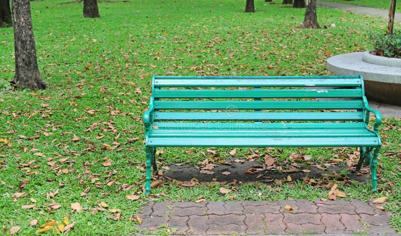Le sedie verdi nel parco pubblico con la caduta hanno asciugato le foglie intorno Ritenga solo e pacifico fotografie stock