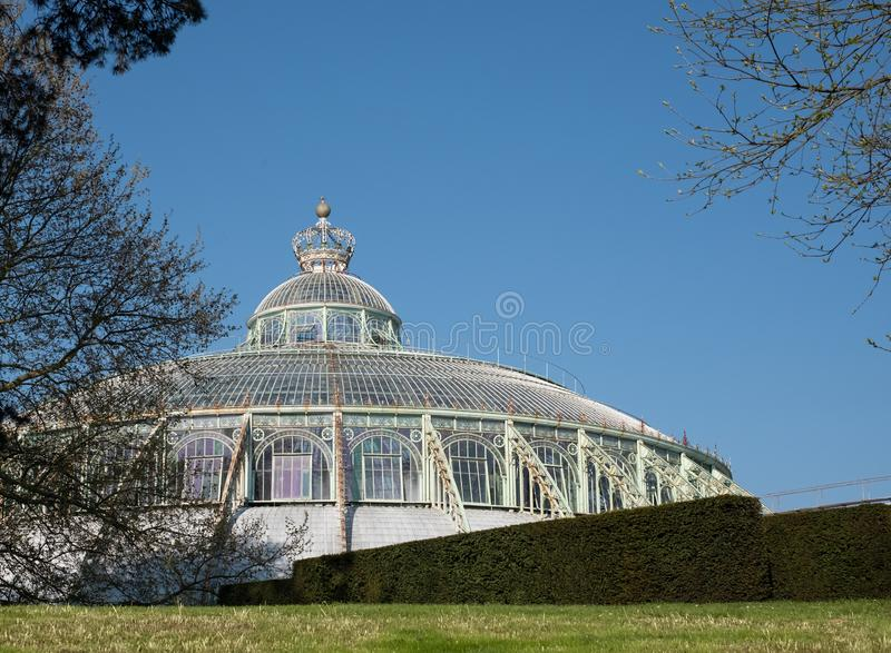 Le serre reali a Laeken, Bruxelles, Belgio: Il giardino di inverno con la corona sulla cima fotografia stock