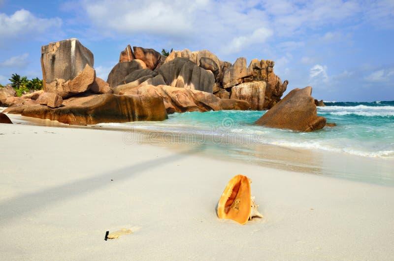 Download Le Seychelles, Digue Della La Immagine Stock - Immagine di esotico, bello: 56888199
