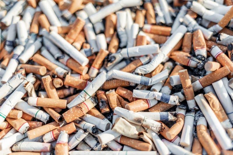 Le sigarette sradicano o molte estremità usate del tabacco con il fuoco selettivo immagine stock libera da diritti