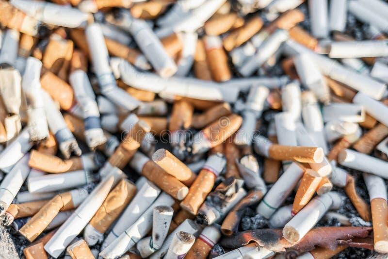 Le sigarette sradicano o molte estremità usate del tabacco con il fuoco selettivo fotografie stock