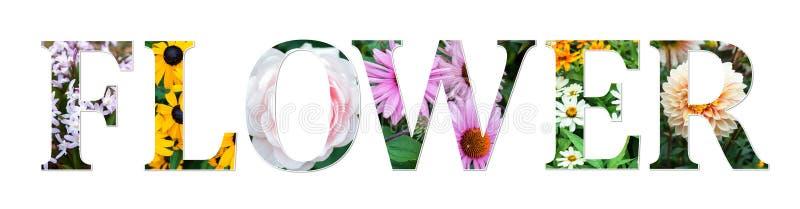Le signe de collage de fleurs a fait de vraies photos florales Police botanique illustration libre de droits