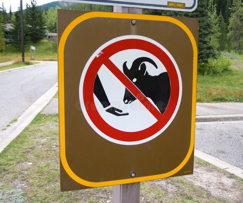 Le signe du ` n'alimentent pas le ` dans Miette Hot Springs, Canadien les Rocheuses photo stock