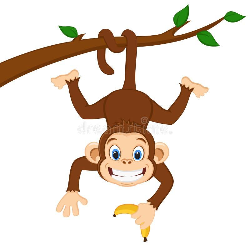 Le singe accroche sur une branche et tient une banane sur un blanc illustration de vecteur