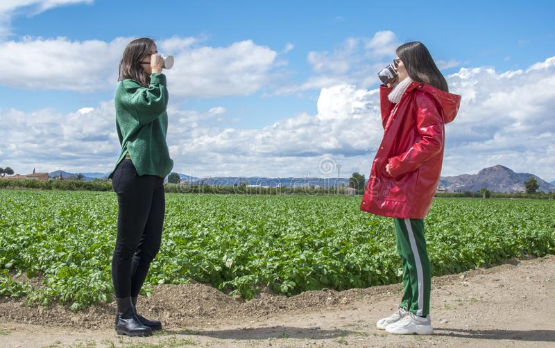 Le skratta unga kvinnor som har gyckel, medan dricka kaffe och prata som ?r utomhus- folk, kommunikation och kamratskap arkivfoto