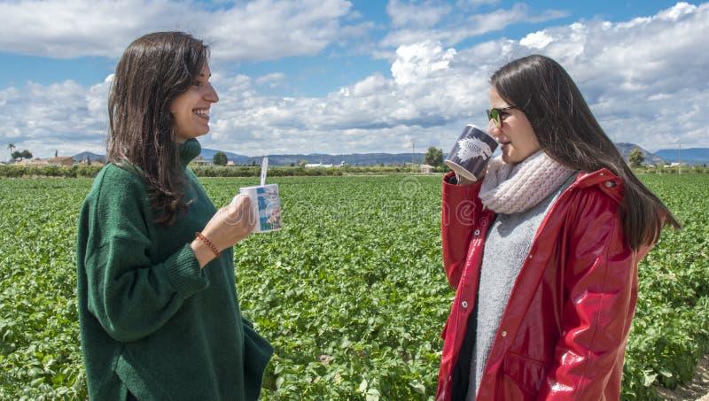 Le skratta unga kvinnor som har gyckel, medan dricka kaffe och prata som ?r utomhus- folk, kommunikation och kamratskap arkivbilder