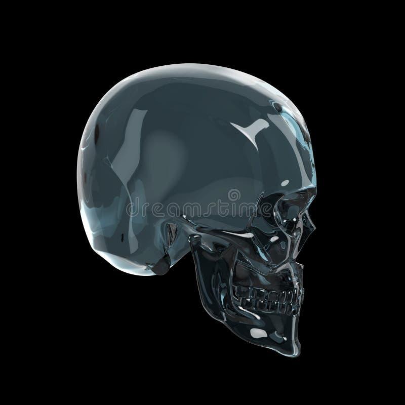 Le skul brillant brillant en verre foncé rendent d'isolement sur la vue de côté de fond noir illustration libre de droits