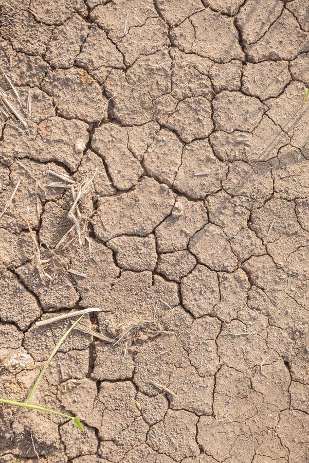 Le sol sec d'été images libres de droits