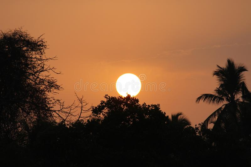 Le soleil bienvenu photographie stock libre de droits